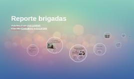 Reporte brigadas