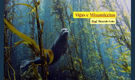 Algas e Mixomicetos