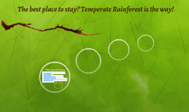 The best place to stay? Temperate Rainforest is the way!