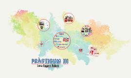 Pràcticum III