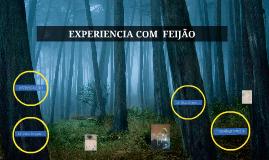 EXPERIENCIA COM  FEIJÃO