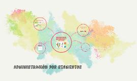 Copy of Adminstracion por segmentos
