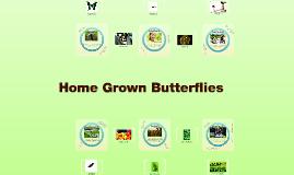 Copy of Home Grown Butterflies