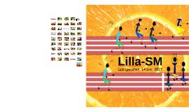 Lilla-SM
