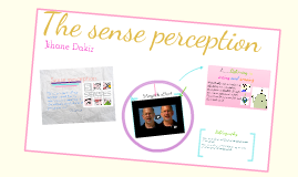 TOK sense perception