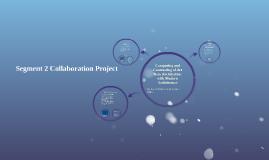 Segment 2 Collaboration Project