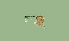 Islas Canarias: Un museo de volcanes