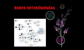 Copy of REDES HETEROGENEAS