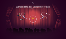 Summer 2014: The Bomgar Experience