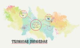 Copy of TECNICAS HUMEDAS