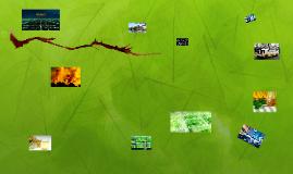 Copy of Biofuels
