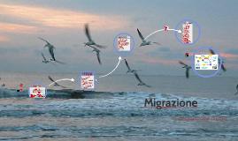 Migrazione di chi?