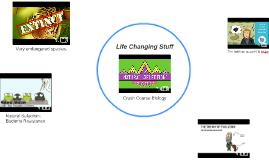 Life Changing Stuff