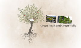 Green Roofs and Green Walls
