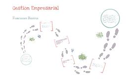 Funciones Básicas de Gestión Empresarial