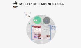 TALLER DE EMBRIOLOGIA