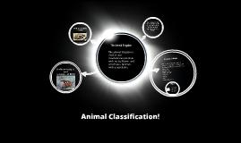 Animal Classification!