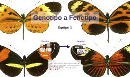 Genotipo