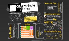 Oberschule Seesen 2016/17