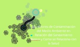 Los actores de Contaminación del Medio Ambiente en Relación