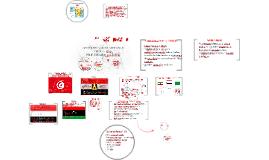 PRIMAVERA ÁRABE: Desdobramentos no mundo islâmico