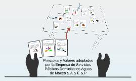 Principios y Valores adoptados por la Empresa de Servicios P