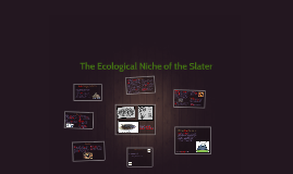 Copy of The Ecological Niche of the Slater