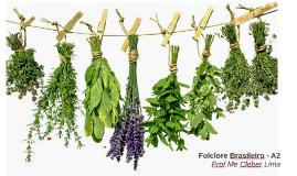 Folclore Brasileiro - A2