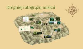 Drėgnieji atogrąžų miškai