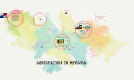 Sector agropecuario en panamá