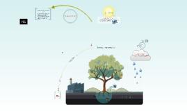 Copy of Ecologia y contaminacion
