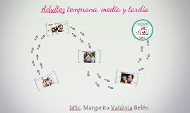 Ciclo vital: Adultez temprana, intermedia y tardía