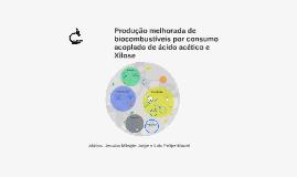 Produção de biocombustíveis pelo consumo acoplado de ácido a