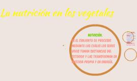 Nutrición en los vegetales.