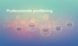 Professionele profilering