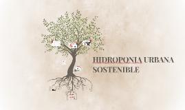 Copy of Hidroponia urbana sostenible