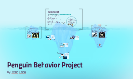 Penguin Behavior Project