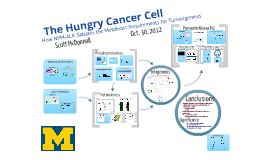 Hungry Cancer Cell