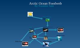 Arctic Ocean Foodweb