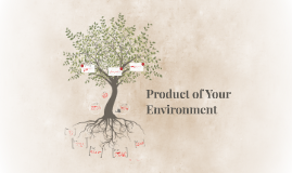 Product of Your Environment
