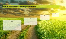 TIPOS DE CORTES EN DIBUJO TECNICO