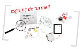 Copy of Esguinç de tornells