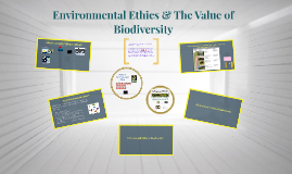 Environmental Ethics & The Value of Biodiversity