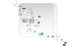 Copy of World Health Organization Presentation