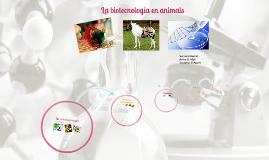 Biotecnologia en animals