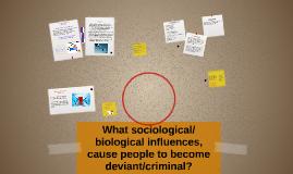 Genetic and Environmental Influences of Criminal Behaviour