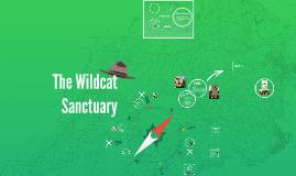 The Wildcat Sanctuary