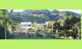 Copy of Parcela 25 A