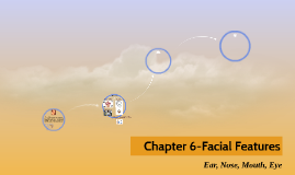 Chapter 6-Facial Features