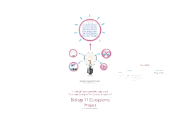 Copy of Biology Ecosystems Project